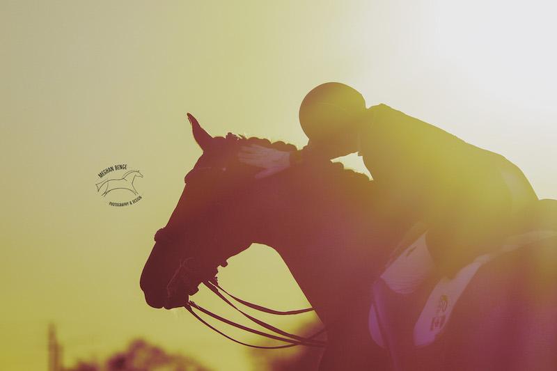 cpedi-florida-2020-6429-Edit-dressagehorse-sunset-web.jpg