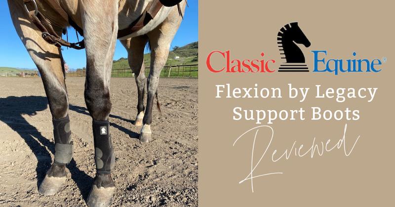 Flexion-Blog.jpg