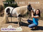 Performa Ride Title (2).jpg
